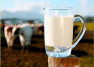 Litigation Raw Milk