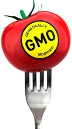 GMOs: Beware Genetically Engineered Foods, Crops, Seeds & Organisms
