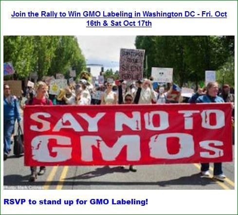 GMO-Rally