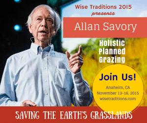 WiseTConf-2015-Allan2-300x251