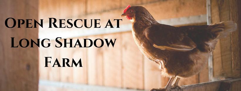 An Open Rescue at Long Shadow Farm - Farm-to-Consumer Legal