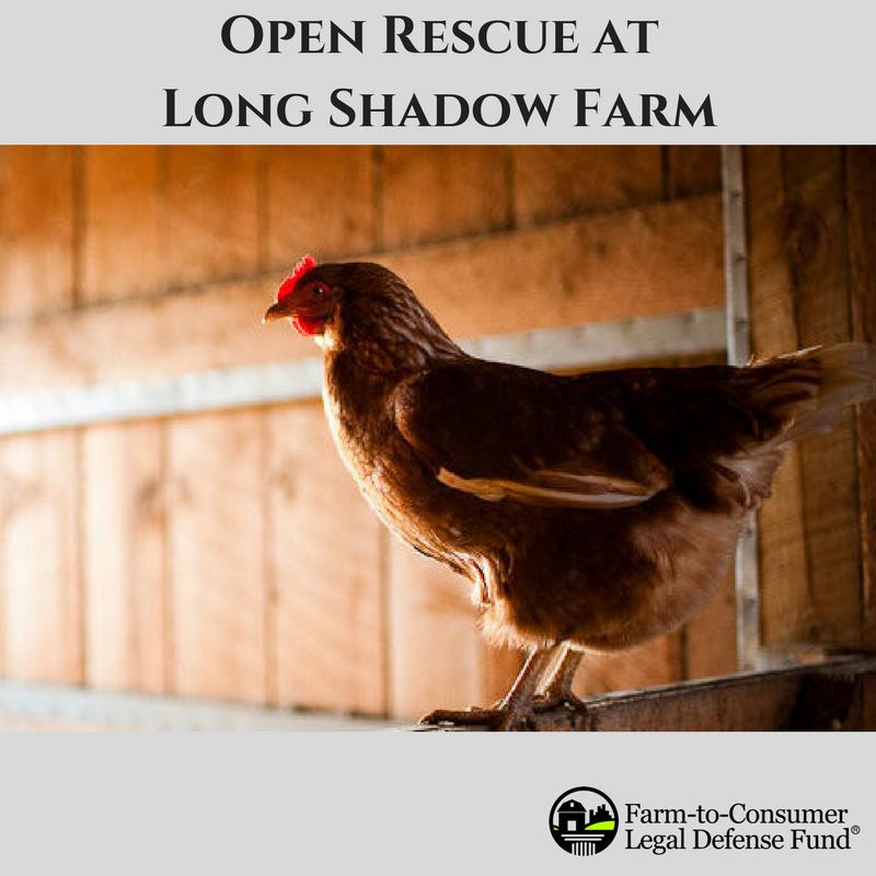 open rescue
