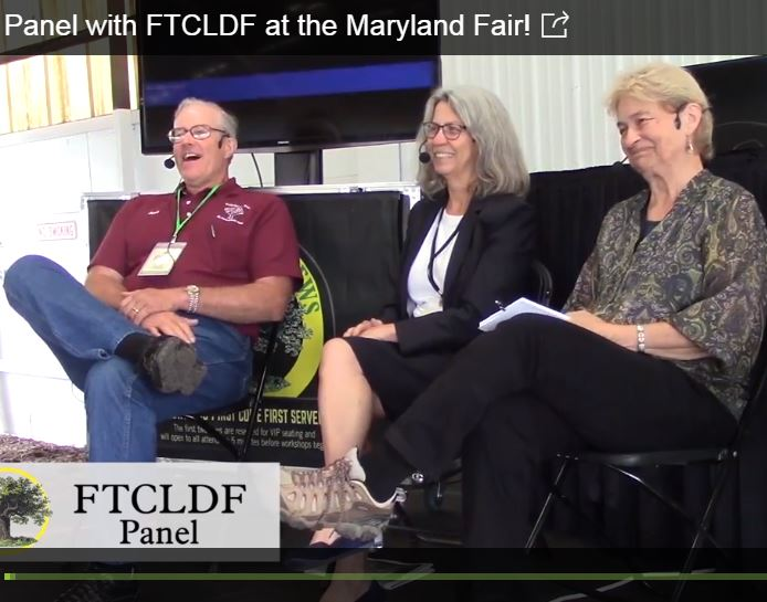 FTCLDF Panel at MENF
