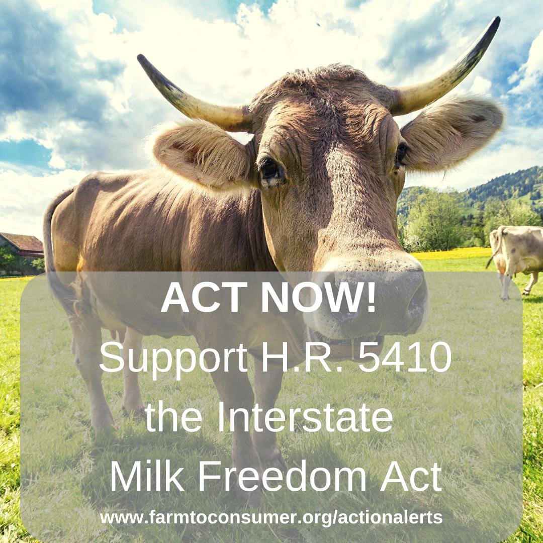 Milk Cow - Interstate Traffic of Raw Milk