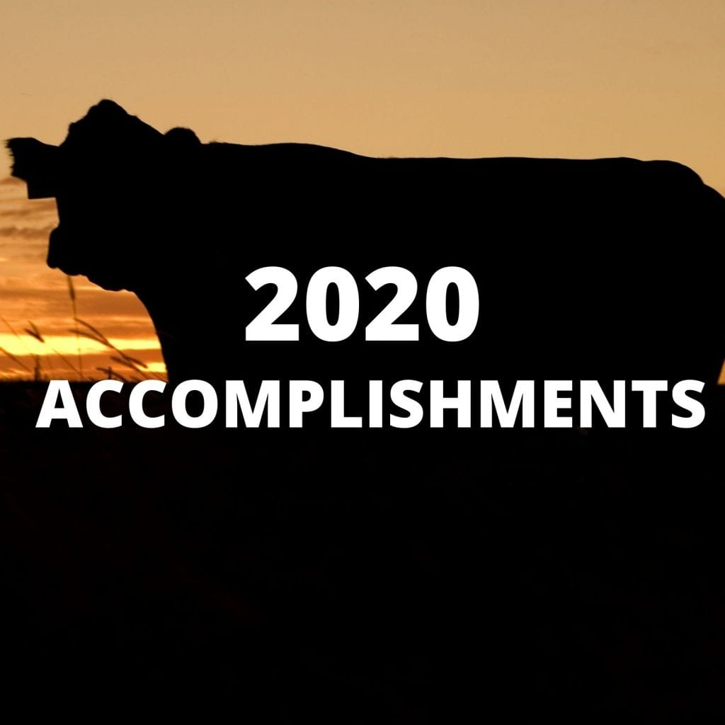 2020 Accomplishments Cow & Sunset
