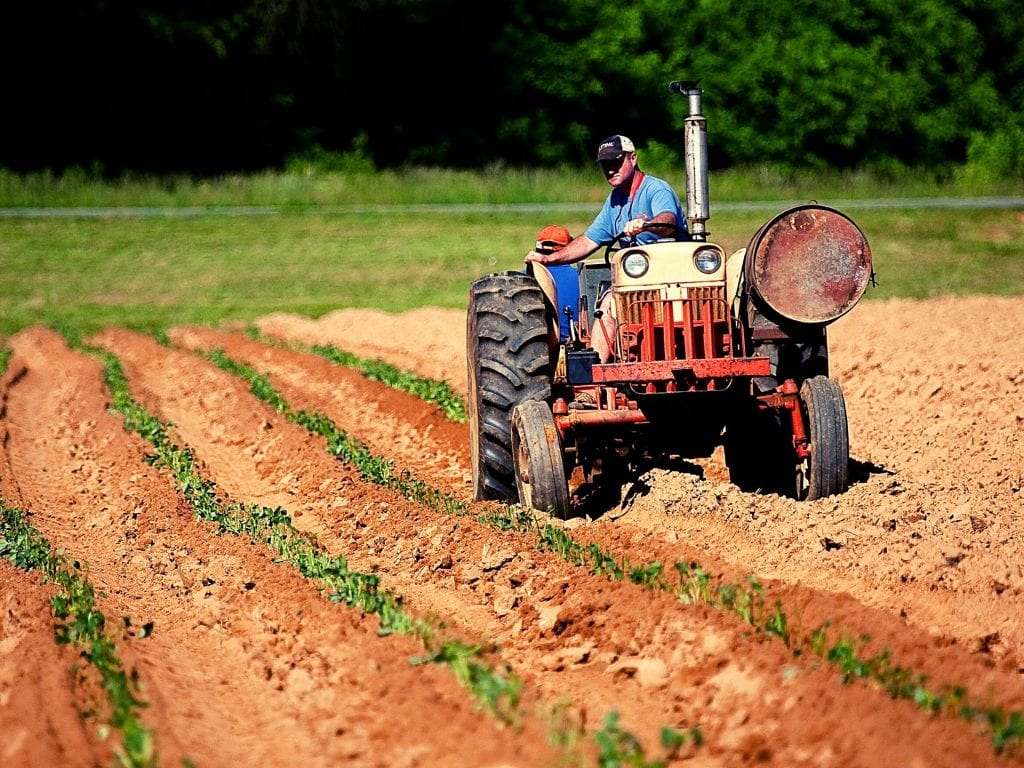 Farmer on Small Tractor