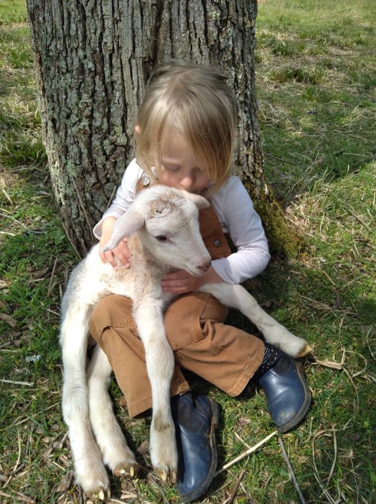 Ewe & Me Creamery Kid & Goat